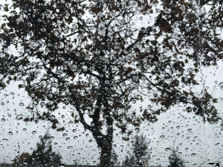 Rain drops in my car window during recent rain at Bay area, California